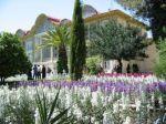 ایران-شیراز-باغ ارم(Iran-Shiraz-Eram garden)